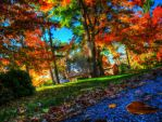 Fall Colors 3 by FlashKid105