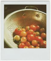 summer tomatoes by princesssfi