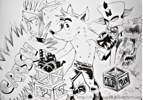 crash bandicoot by HinataLove99