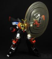 SRC - GaoGaiGar - Protect Shade by Tformer