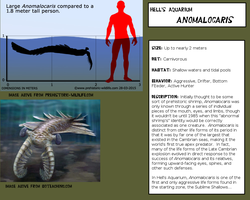 Hell's Aquarium Fact Files - 001: Anomalocaris by Kerian-halcyon