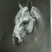 Horse drawing  by Yakise