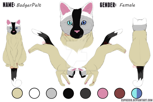 :OC: BadgerPelt Reference by TheSongOfADemonsSoul