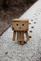 Danbo goes for a walk by Funky-Dragon