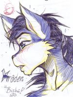 Kradies all purdy- by carnival