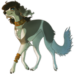 Follow That Saluki by Twifeather