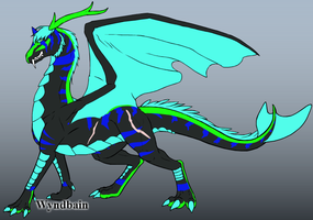 Me as a dragon by Darksonicboom