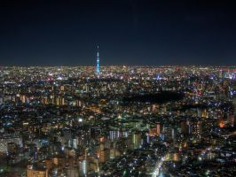 Tokyo from Sunshine 60 at Night by g-hennux