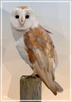 Triangular Barn Owl by azeblueprint15