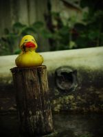 The End of a Rubber Duck by 6igella