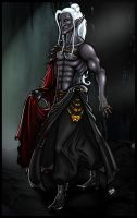 Drow wizard by IRIDION22