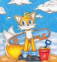 Tails on the Beach by DragonQuestHero