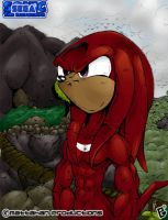 Knuckles by mattahan