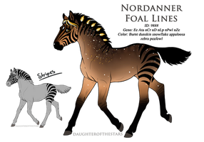 9888 - Nordanner Foal Design by Ikiuni