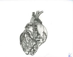 Heart by gdc1072
