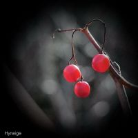 Trois petits fruits by hyneige