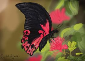 Butterfly Speed Paint by jesuslover488448