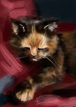 Liza the cat by 0rigano