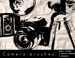 Camera Brushes by bum23