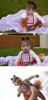Baby Nyan Cat by bchan