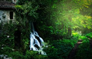 FGM Premade Background 36 by FairieGoodMother