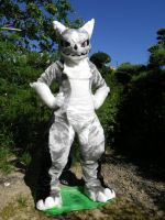 Crome fursuit by fima-llod-QL