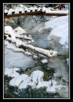 Between water and ice... by MirachRavaia