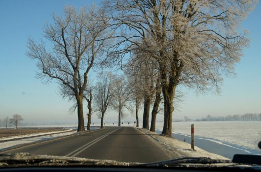 Winter landscape from the window of the car by BW-Neelly