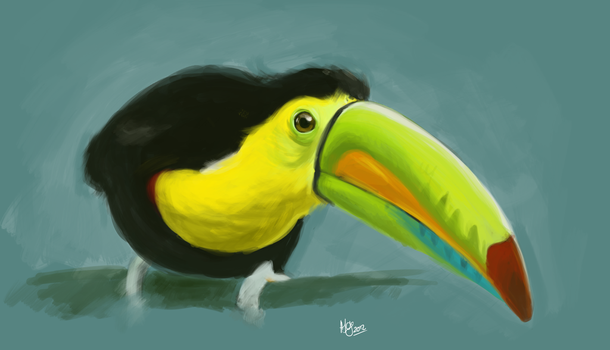 Sketch Toucan by odielou