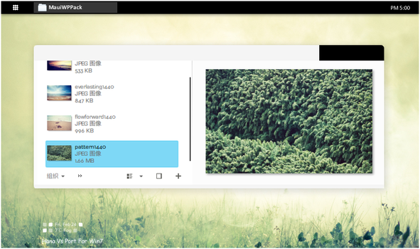 Hana for Win7 by evthan