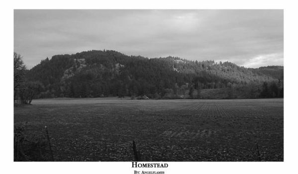 Homestead by angelflames