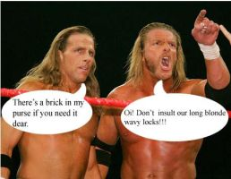 HBK and Triple H by snapelupinlvr