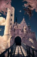 R72 Monthly IR Post Entry (May) by swiftmoonphoto