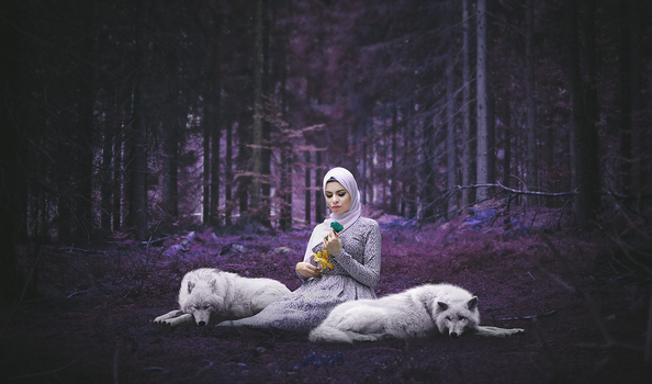 The Girl Who Cried Wolf by Ahmed-Fares94