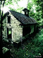 Tiny abandoned house by FFeLKat