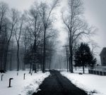 Foggy Winter by JohnKyo