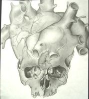 Skull to heart... by awf1010