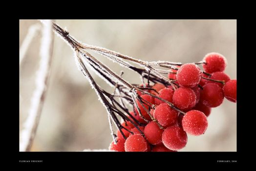 colors of cold days by hermik