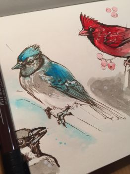 Tonight birds studying dynamic sketching Part4 by Pykodelbi