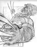Wolverine is Angry by MicahJGunnell