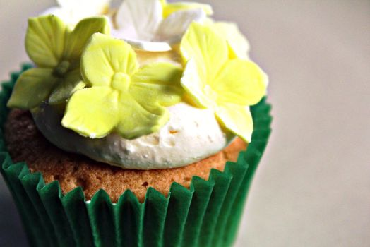 Flower Cupcake 2 by i-can-talk