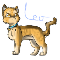 LEO by SerenadingLove