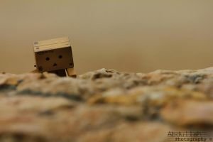Danbo - Will not be fall by Aharbi