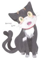 [RE] Cait Sith by Roumea