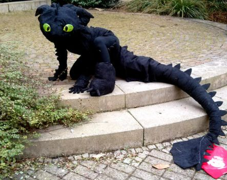 Toothless Cosplay by SiraWarriorCat