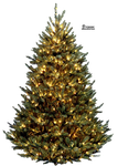 Xmas tree png 2 by iamszissz