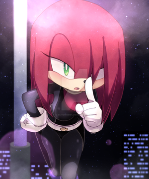 COM - Kasumi the Echidna by Baitong9194