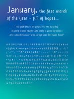 January - Pixel Font -Supports a lot of Languages- by typesprite