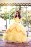 Belle of the Ball by MomoKurumi