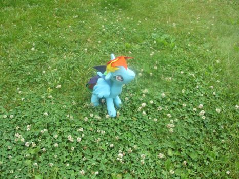 Rainbowdash Plush - Hello Up There! by MollyDollies